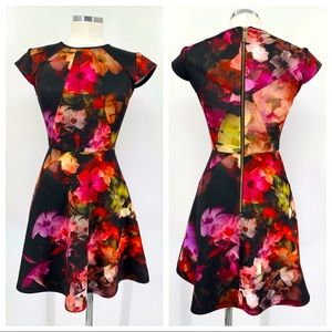 Ted Baker Embla Floral Print Neoprene Skater Dress